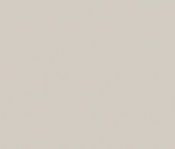 U7081 ST76 Светло-серый сплошной (Компакт-плиты)