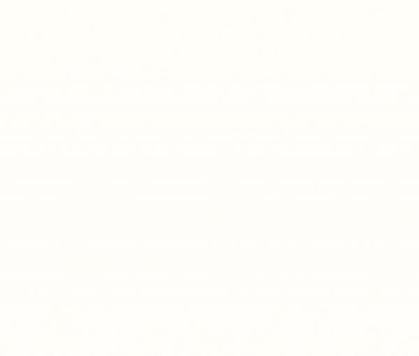 W1101 ST76 Белый Альпийский сплошной (Компакт-плиты)