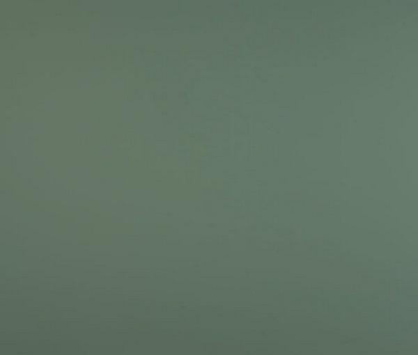 FX 0773 Verde Brac